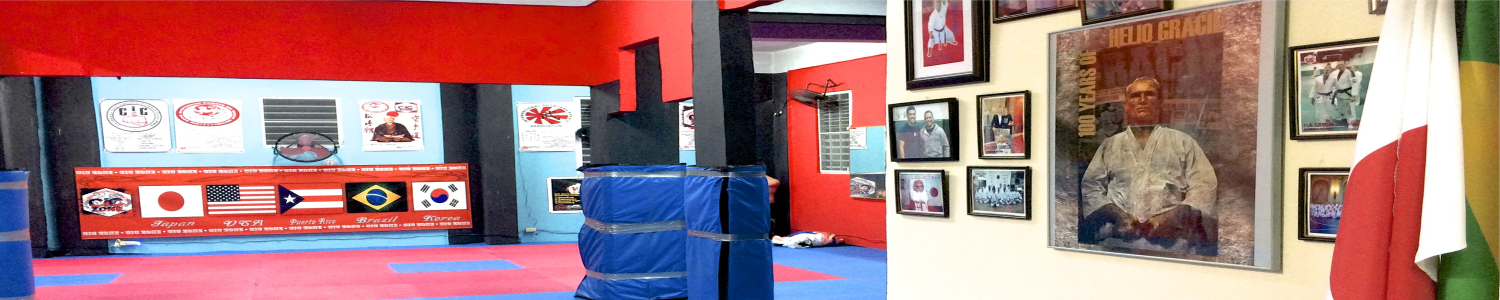 CiC Zone Home Dojo